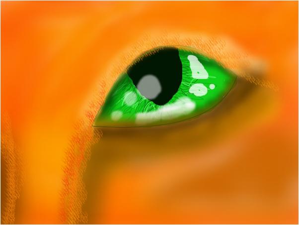 beginning eye