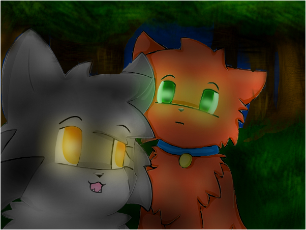 hey kittypet, my name is Graypaw