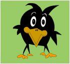Wackadoo Bird