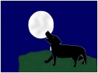 Wolf Howling Its Sorrows to a Full Moon