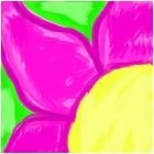 Flower (close up)