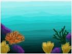 The underwater world