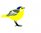 request... bird