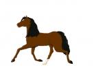 Bay Horse