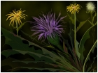WILD LETTUCE AMONG THE SPRING FLOWERS
