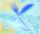miror beauterfly