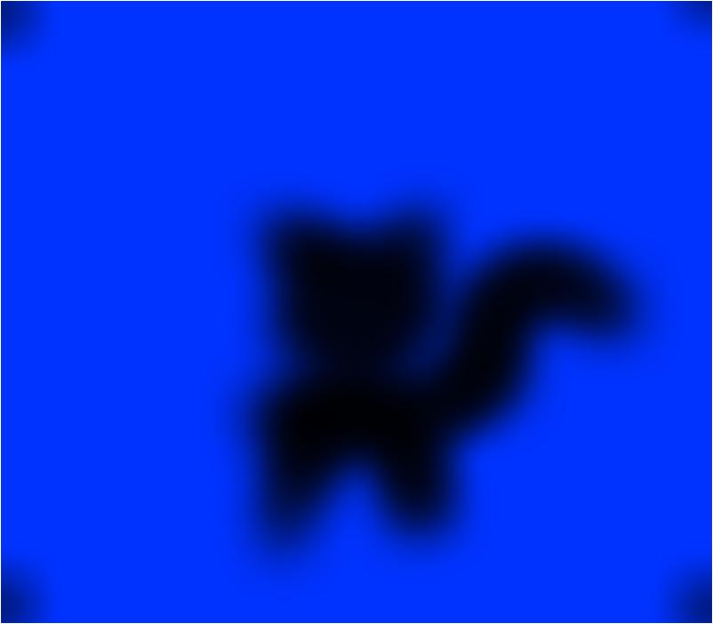 random black cat