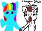 Rainbow Dash & Grey333