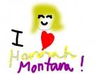 I luv Hannah Montana!!!!!!