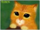 Shrek :)