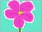flower x