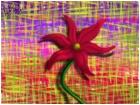 plaid flower