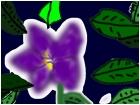 Flowering buity
