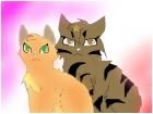 Tigerstar and Sasha