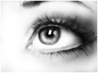 eye study again