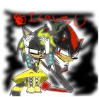 shadow the hedgehog and thunder the cat forever