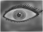 eyee x
