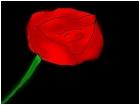 :D a rose