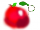 Apple Practice #2