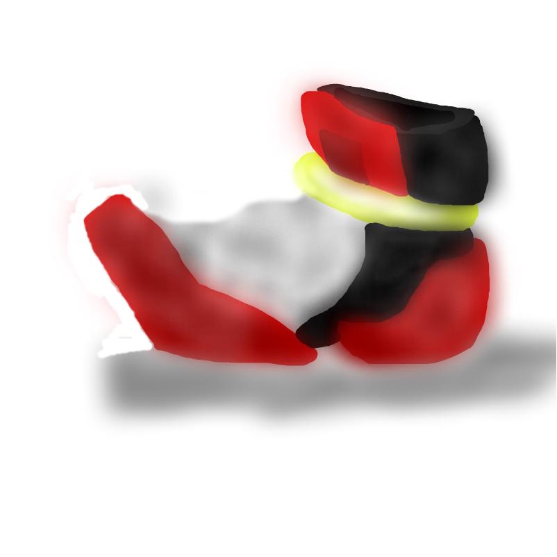 shadow's shoe