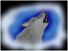 wolf tears