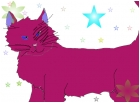 Purple Cat?