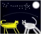 striped cheetah meets wolf under a starlit stars