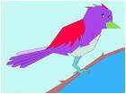 colorful bird : )
