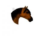 My Horse Friday