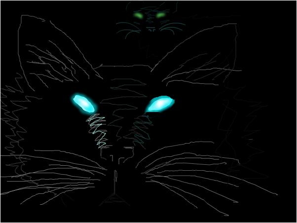 Moonlit Whiskers
