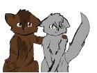 Dovepaw and Tigerheart