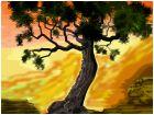 Burl Tree in the Painted Desert