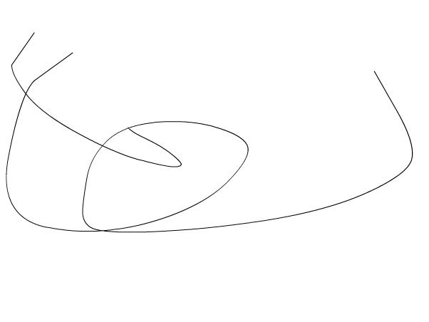Scissor tail Flycatcher