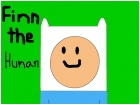 Finn the human off of Adventure Time