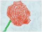 spray painted rose