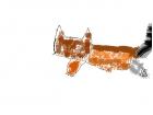 hot dog cat