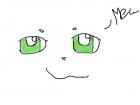 eyes of the kitten