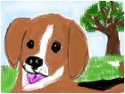 Beagle in the Yard