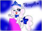 palace pets pumpkin