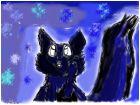 Ночь и Кот