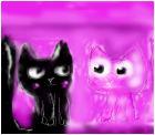 Котики на розовом фоне
