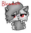 for Bleaach