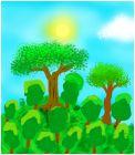 Лучший лес