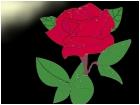 still a little light in the dark (rose)