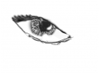 drawing of an eye