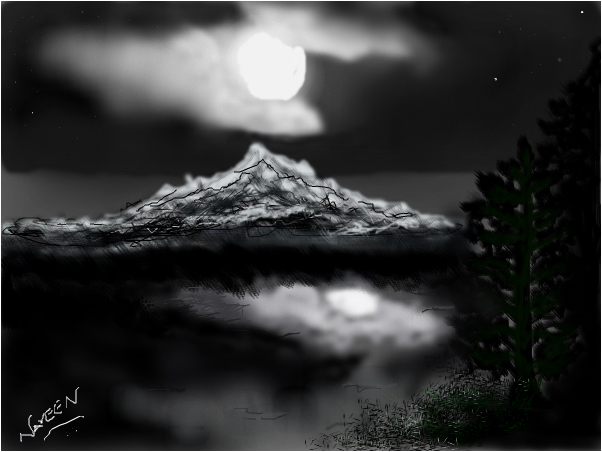 lake under the moon
