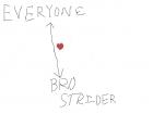 Bro shipping diagram