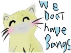 cats dont have bamgs (fringes)
