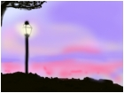 sunet pink