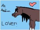 all arabian lover!